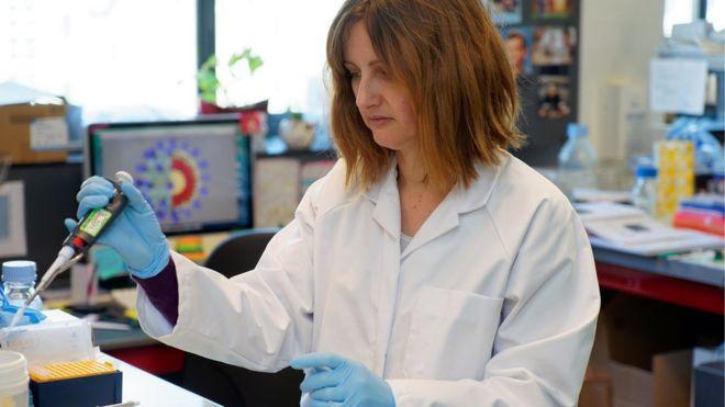 وزيرة الصحة: 442 حالة مصابة بفيروس كورونا حتى الآن